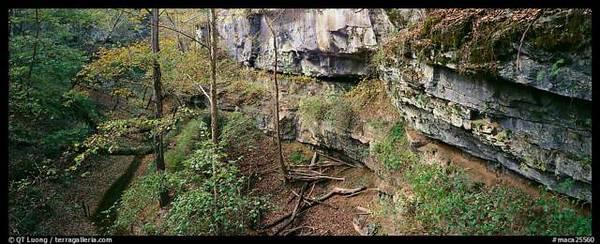 limestonecliffs2.jpeg.jpg